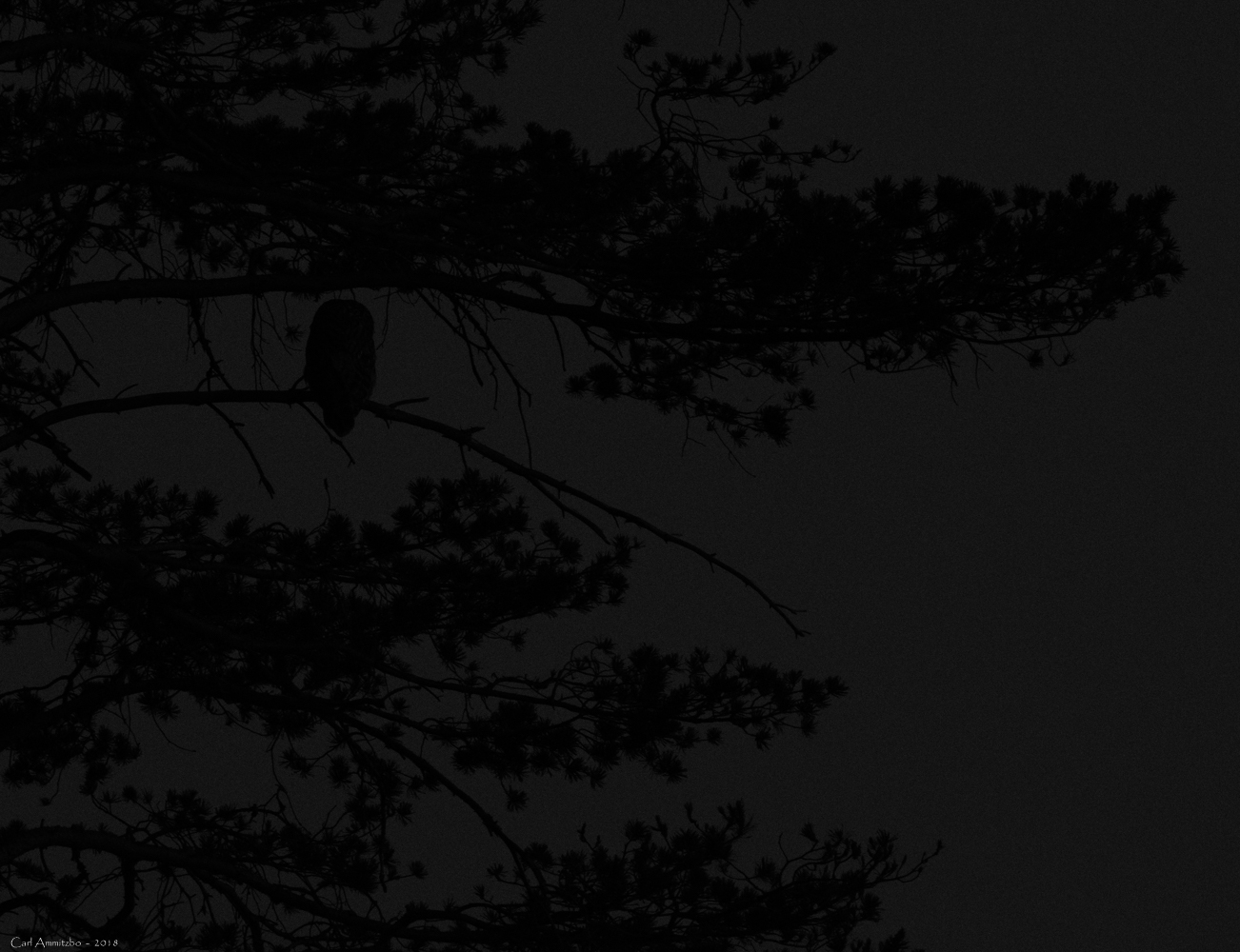 08 - 0608 - Slagugle - 01 - Bergslagen