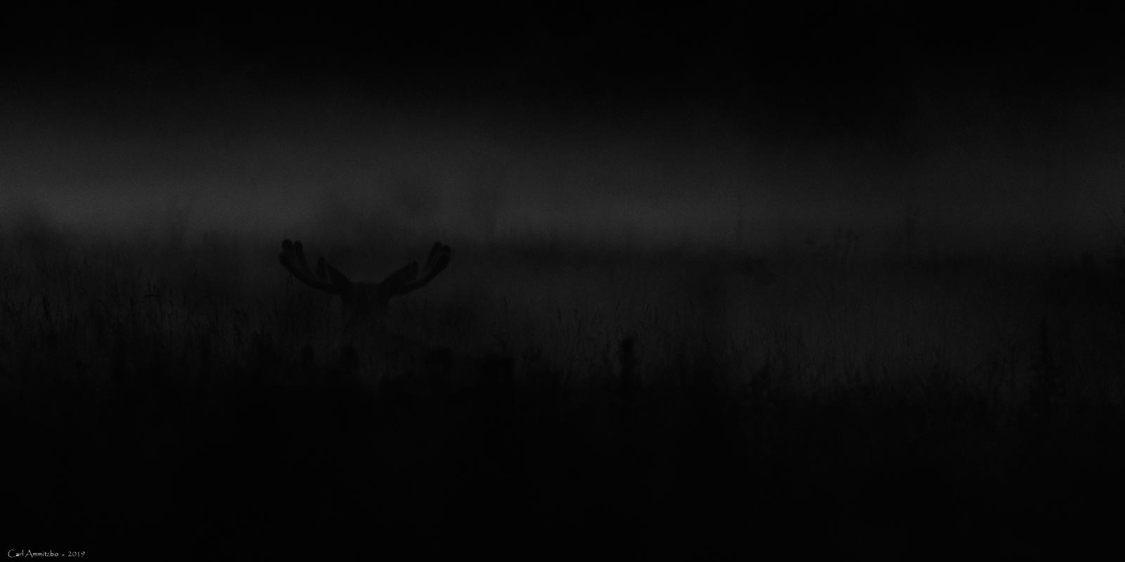 03 - 0712 - Elgtyr - sh 04a - Bergslagen